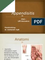 appndiks