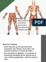 Anatomia Macroscopica y Nomeclatura de Los Musculos.