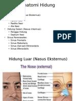 revisi anatomi,histo,fisio,Hidung.ppt