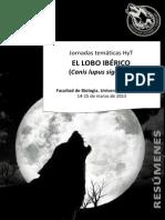 Resumenes Lobo 2013