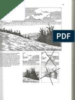 Scoala de desen2.pdf