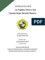Ganglion Lipoma