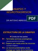 Sinapsis y Nt