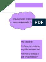 11_aulas_teoricas_21_MAI_2.pdf