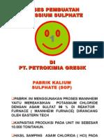 1PG_ZK
