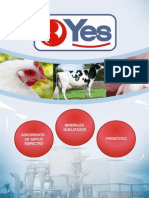 Catalogo Productos Yes