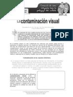 La Contaminacion Visual
