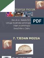 Droga Mijenja Mozak-predavanje i Igrokaz