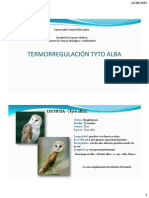 Termorregulación Tyto Alba
