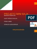 Luizinho Baja