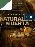 Naturaleza Muerta  - Victor Conde