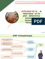 Diag y Tratamiento Para Amenorrea Por Sop