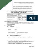 IT Nº 001 2014-MPHi-OPI Riego Ñaupamarca(Observado)