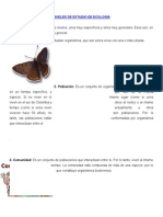 Niveles de Estudio de Ecología