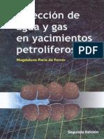 Inyección de Agua y Gas en Yacimientos Petrolíferos - Magdalena Paris