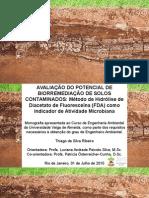 Biorremediação de solos contaminados