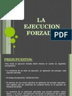 evy-la-ejecucion-forzada1-150704212918-lva1-app6892 (1)