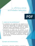 Profesiones, Oficios y Otras Actividades Laborales