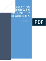 Regulación Génica en Procariontes y Eucariontes.