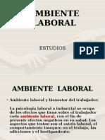 AMBIENTELABORALFINAL(1)