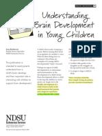 Understanding Brain Development in Children