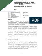 Derecho Procesal Del Trabajo silabus