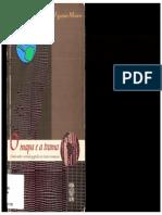 MONTEIRO, Carlos Augusto de Figueiredo. O Mapa e a Trama Ensaios Sobre o Conteúdo Geográfico Em Criações Romanescas.florianópolis Ed. Da UFSC, 2002