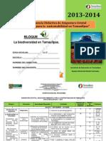 DOSIF-SECUENCIA-DIDACTICA-EASTams-Agosto15.pdf