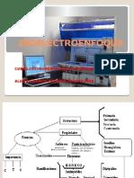 Isoelectroenfoque IV