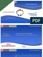 FE-001-DGIEM_V01.pdf