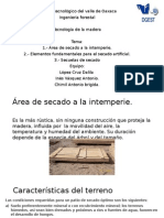 areas de secado de la madera a la intemperie.pptx
