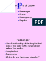 Labor and Delivery Powerpoint 2