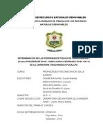 Proyecto-de-cedro-casi.doc