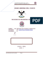 MODELO DE INFORME DE LABORATORIO DE FLUIDOS.docx