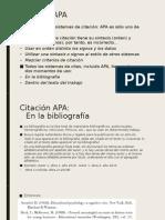 breve introducción  a APA