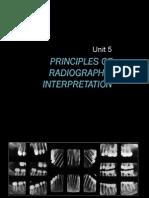 05 Principles of Radiographic Interpretation 08