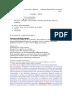 Ideas Curriculum Socio-cognitivo