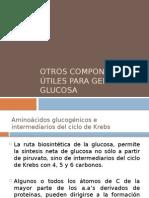 gluconeogenesis complementos