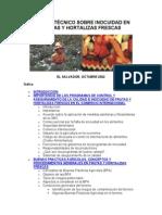 MANUALINOCUIDADfrutasyhortalizas (1)