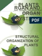 Plants Organism