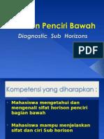 Lect_4.Diagnostic Horizon (Subhorizon)