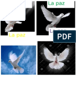 Palomas de La Paz