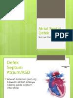 Atrial Septal Defek Lia