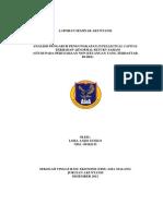 Seminar Akuntansi Lora Anjis s 09102135