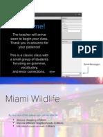 Classic-miami-wildlife_2_1.pdf