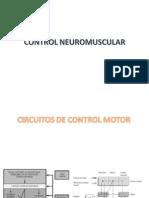 Propiocepcion fisiologia.ppt