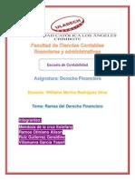 Ramas Del d. Financiero (1)
