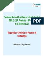 4_Evaporacao_e_circulacao_no_processo_de_cristalizacao_Pedro_Avram_IPRO.pdf