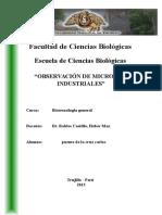 1 Observación de Microbios Industriales