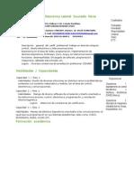 Curriculum Vitae Nuevo11